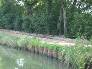 op vele km's langs het kanaal worden fietspaden aangelegd