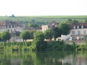 de enige wijngaard, vlak bij het begin van het Canal de Bourgogne