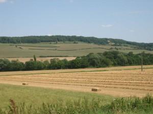 eindeloze graanvelden, laat de boeren maar dorsen