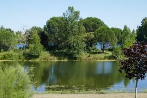 het eiland midden in het Lac Bleu