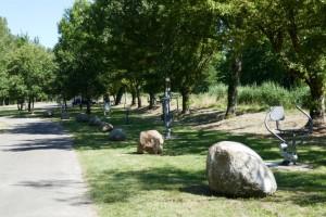 fitness toestellen in het park